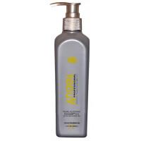 Šampūns gaišiem balinātiem matiem 500 ml